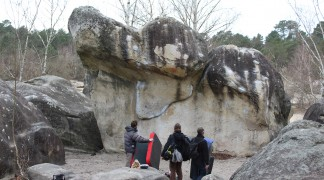 Sortie à Fontainebleau